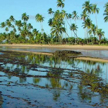 Praia da Bombaça